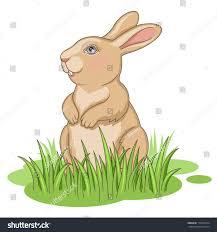 Rabbit clipart grass 64 κουνεΠια Pinterest