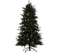 Best Kind Of Christmas Tree Stand by Christmas Trees U2014 Qvc Com