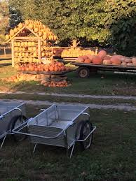 Rileys Pumpkin Patch Pittsburgh by 10 Great Pumpkin Patches In Kentucky
