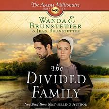 The Divided Family Audiobook Cover Art