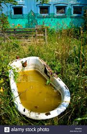 A Corroded Old Bathtub Filled With Dirty Water Sits In A Field ... Small House Water Totes One Year Later Big Sky Dont Let Your Outside Faucets Freeze How Can I Get Hot In My Horse Barn The 1 Resource For To Avoid Frozen Pipes The Horserider Western Vintage Bar Build Garage Journal Board Automated Watering System Youtube Steps Winterize Idea Of How Hide A Water Spigot Landscaping Pinterest 83 Best Colorful Faucets Images On Old Dreaming Owning Your Own Farm Heres Very Nice Starter Piece Building Goat Part 2 Such And
