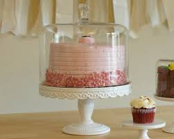 7 Amazing Cake Stand With Dome Design Ideas 21
