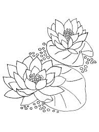 Water Lily Flower Coloring Pages 8