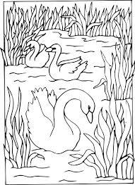 Dessinés à La Main Décor Cygne Image Pour Adulte Coloriage Livres