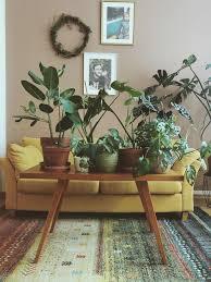 die schönsten pflanzen deko ideen seite 106