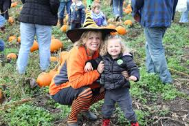 Pumpkin Patch Portland by Pumpkin Patch Hay Rides Petting Zoo Hay Maze In Vancouver Wa