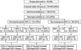 Viral Shedding Herpes Simplex by Guidance On Management Of Asymptomatic Neonates Born To Women With