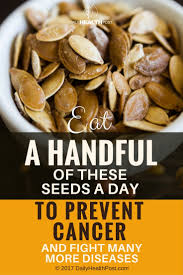 Pumpkin Seeds Prostate Cancer by Eat A Handful Of These Seeds A Day To Prevent Cancer And Fight