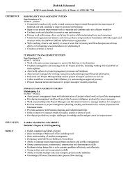 Download Project Management Intern Resume Sample As Image File