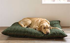 stylish pillow dog bed tattersall pillow dog bed orvis