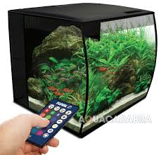 fluval flex curved glass led nano aquarium fish tank 34 or 57l
