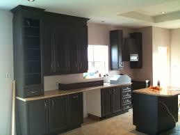 déco armoires de cuisine materiaux paul 36 07591608 design