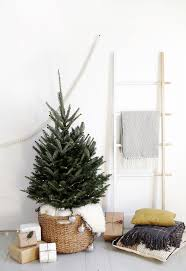 Best Christmas Tree Type by Best 25 Small Xmas Tree Ideas On Pinterest Xmas Xmas Tree