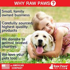 Fresh Pumpkin For Dog Diarrhea by Amazon Com Raw Paws Pet Natural Pumpkin Powder Digestive