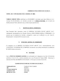 Demanda De Beneficios Sociales 2009 ToMASA