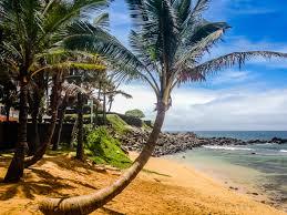 100 The Beach House Maui Inn At Mamas Fish Paia Hawaii Beach