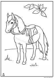 Horse Animal Coloring Book Pages Magic Animals