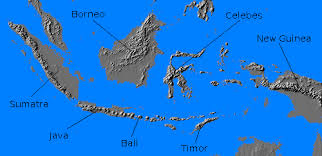 Relief Map Of Netherlands East Indies Indonesia