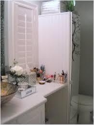 Teenage Bathroom Decorating Ideas by Modern Furniture Toilet Storage Unit Room Decor For Teenage