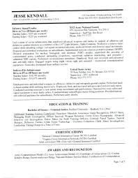 Federal Resume Tips E Writing A Nice Government