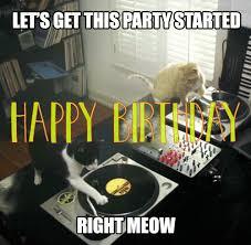 Funny Cat Party Birthday Gif