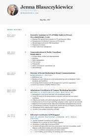 Executive Assistant To Vp Of Public Safety Privacy Resume Example