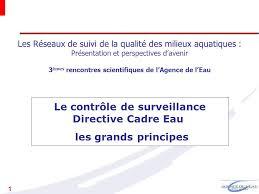 le contrôle de surveillance directive cadre eau les grands
