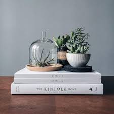 Cheap Books For Decoration by Hey Geniusbones Your Coffee Table Game Is Strong Mywestelm