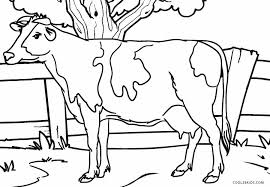 Pin Drawn Cow Coloring Page 4