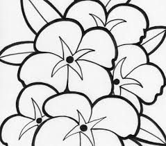 Flower Coloring Pages Printable Page Sheets Flowers For Kids