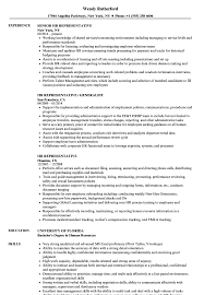 Download HR Representative Resume Sample As Image File