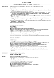 Process Executive Resume Samples | Velvet Jobs Good Skills And Attributes For Resume Platformeco Examples Good Resume Profile Template Builder Experience Skills 100 To Put On A Genius 99 Key Best List Of All Types Jobs Additional Add Sazakmouldingsco Of Salumguilherme Job New Computer For Floatingcityorg 30 Sample Need A Time Management 20 Fresh And Abilities Strengths Film Crew Example Livecareer