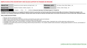 Executive Secretary And Sales Support In Tender De Resume Template
