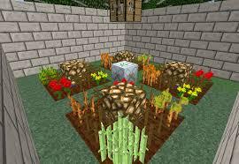Minecraft Pumpkin Seeds Wont Plant by Cross Breeding The Tekkit Classic Wiki Fandom Powered By Wikia
