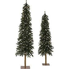 Types Of Christmas Trees To Plant by Christmas Tree Decorating Ideas