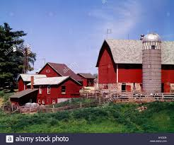 Wisconsin Dairy Farm With Typical Red Barns Wildmill And Storage ... Holstein Dairy Cattle In A Green Field With Red Barn Stock Campground Home 1201 Best Barns Images On Pinterest Country Haing At The Big Aslrapp I Lived A Dairy Farm When Was Girl And Raised Calves Ihocalendar Ihocalendarcom Showcases Photos From Wisconsin Summer Photo 37409353 Shutterstock Herd Of Cows In Pasture With Large Red Family Farms Maker Puts Local Farmers First Pole Barn Sweet