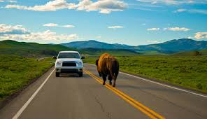 100 Truck Route Driving Directions Do I Need A Car In Yellowstone How Long Does It Take To Drive My
