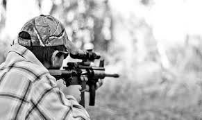 Hunting with the AR 15 AllOutdoor
