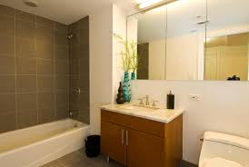 Small Bathroom Remodels Before And After by Small Bathroom Remodels Maximal Outlook In Minimal Space And Cost