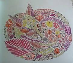 Millie Marotta Animal Kingdom Fox Done In Pencils