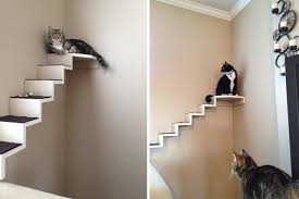 cat stairs catification diy mini cat staircase jackson galaxy