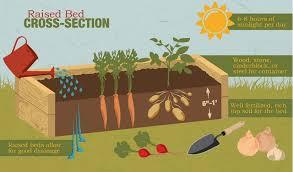 How To Build Raised Garden Bed 17 Best About Raised Garden