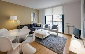 Apartment Living Room Decorating Ideas On A Budget Luxury Design Best Model