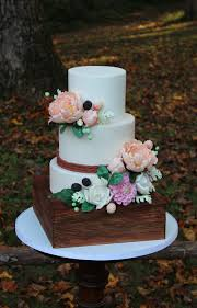 2014 NC State Fair Cake