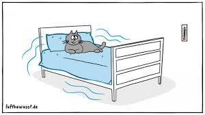 zu trockene luft im schlafzimmer diese tipps helfen