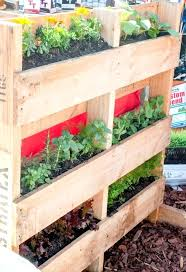 Vertical Gardening With Pallets Pallet Garden Pots