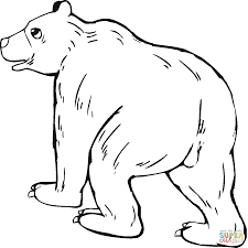 Dibujo De Caricatura De Un Oso Grizzly Para Colorear