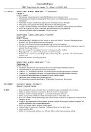 Download Registered Nurse Labor Delivery Resume Sample As Image File