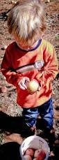Best Apple Hill Pumpkin Patch by Adventures At Apple Hill Part 2 Windy Pinwheel