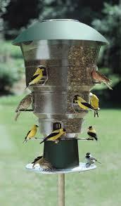 Wild Bills Squirrel Proof Bird Feeder Bird Watchers Bird Watchers